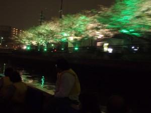 船からの夜桜の眺め